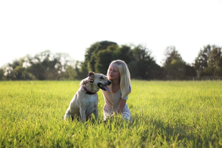 Plano de saúde para pet